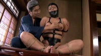 Nipple torture Collection 4