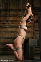 Classic Shoot- Where it all Began - The Training of Bobbi Starr, Day One