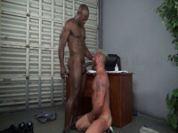 Dragon Media - Rocco Steele's D Goes to Jail(1080p)