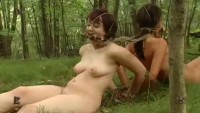 Insex - The Ripening 2
