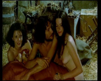 Le Desir (1974)