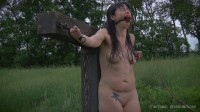 Smut Writer Part Two - Siouxsie Q (Jul 11, 2014) (body, mouth, new).