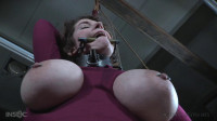 Porky - vid, slave, inside, playing