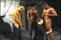 Download Huge Homosexual Gang Bang With Cocks Of All Sizes