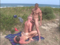 Absolute Outdoor Orgies Collection