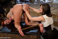 Kelly Divine VS Stanley