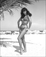 Bettie Page Vintage Model