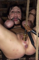 Insex - The Pear RAW - 912