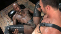 Dark sex club with huge dicks