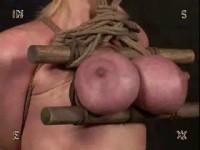 Insex - Trailings (828, 130, Erika, 49)