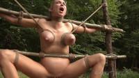 Fear in woods