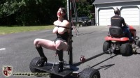 The BDSM Fantasy 3 (50 video)