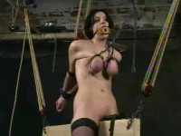 Insex - Played (101s 48 Hours Live Feed Day 2) (Live Feed From Oct 25) RAW