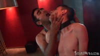 BoundArea — Collared Twink-pup Fucked Down His Throat And Ass