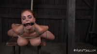 Trapped Part Two Ashley Graham.