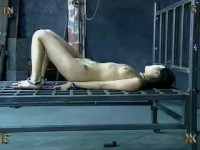 Insex - The First Day of Xmas (Live Feed From December 24-25, 2002) (731)