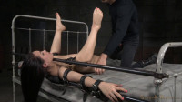 Gabriella Paltrova, Matt Williams, Owen Gray high