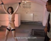 Wet bullwhip punishment