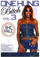 Download One Hung Bitch 03