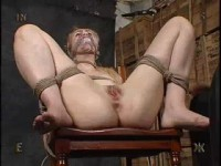 Insex - Tests 10