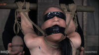 Methinks she likes it - strap, ultra, mouth...
