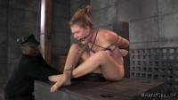 Ashley Isn't Ready For What Comes Next - bondage, domination, like, pene