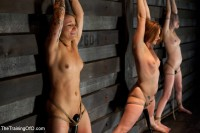Four Girl Intake - Sado-Masochists Slave Testing