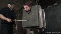 Whipped, Bound and Boxed - Ashley Lane (Feb 28, 2014)