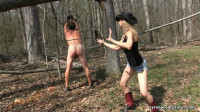 tit video new - (Good Old Country Whipping)