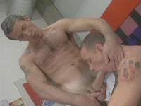 The Best Of Hard Fuck Collection