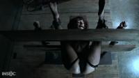 Dakota Marr - Stress & Fear