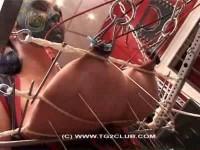TG - Slave Juggs Part 35 (scene, punish, piercing)!
