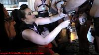 Amoeba Of Trust — FemDom Retreat Chastity Humiliation