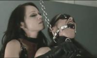 Best Bdsm Sex Videos The Ivy Manor Slaves Part 1