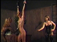 House Of Decadence - stacked, media video, online, adult