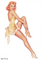 Pin-up collection 1940-2000