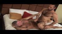 Muscle bears with huge dicks