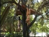 BandD Pleasures - Cruelty Canyon