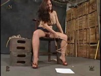 Insex - 813s Test