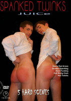 Download Spanked Twinks