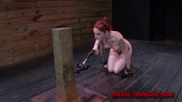 SexualDisgrace - May 28, 2014 - Sheena Rose is Kept in Place for Disgrace