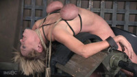 Sweet Agony Part 3 - Dee Williams