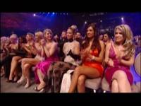 2008 AVN Awards Show