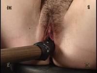 Insex - Tests 14 (Tests XIV) - Rose