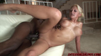Black dick in white pussy