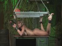 BDSM and Bondage 215