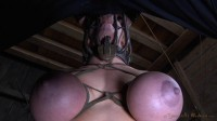 SexuallyBroken - October 10, 2014 - Darling - Matt Williams
