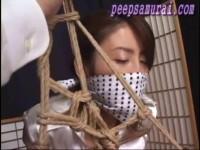 Bondage Samurai - 1530(2012/size: 843.1 MB)