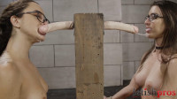 Bondage Blowjob Competition