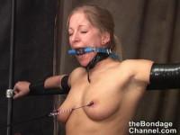 Bondage Stars Vol. 14